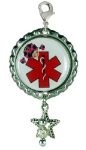 Lady Bug Medical ID Charm