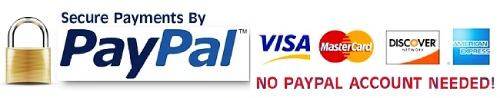 We Accept Visa, Discover, American Express, Master Card, and PayPal